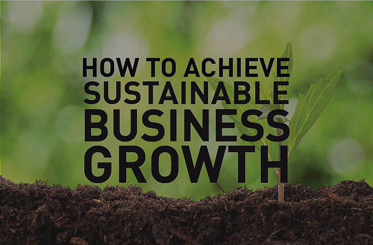 sustainable_business_growth.jpg