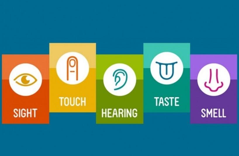 「sensory marketing」の画像検索結果